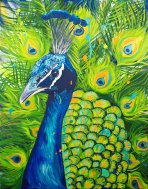 Brightly Colored Peacock Acrylic Painting on Canvas